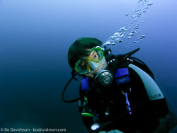 BD-070402-Similan-4020057-Homo-sapiens.-Linnaeus.-1758-[Diver].jpg